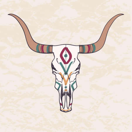 longhorn cattle: Vector illustration of bull skull  Illustration