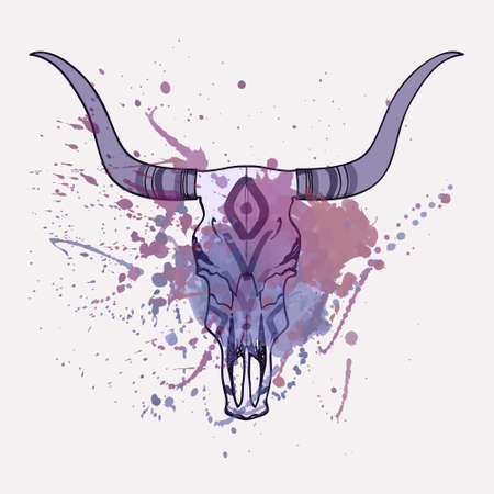longhorn cattle: Vector illustration of bull skull with watercolor splash Illustration