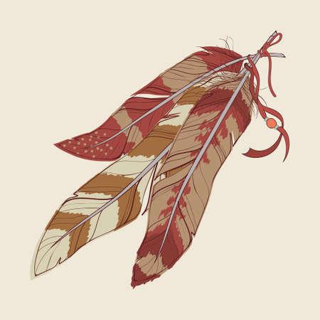 装飾的な羽のベクトル イラスト