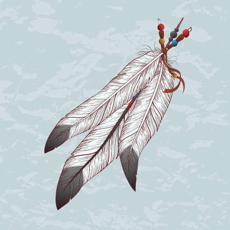 cherokee: Vector colorful illustration of feathers