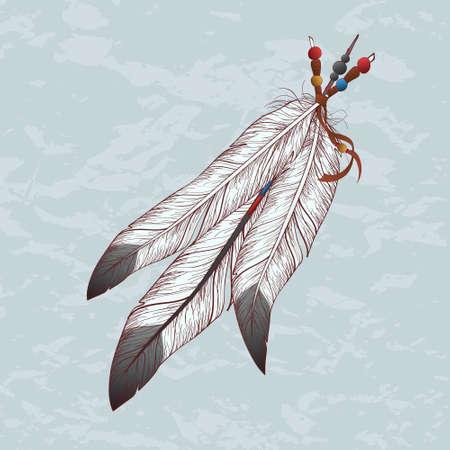 Vector illustration colorée de plumes Banque d'images - 30104589