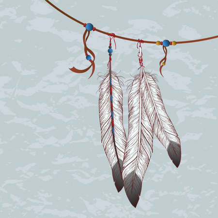 Vector colorful illustration of feathers Vector