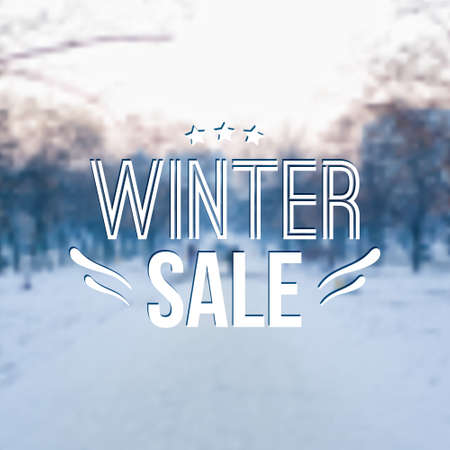 snow trees: Vector winter blurred illustration with snow, trees and typography text Winter sale