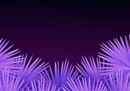 Vector colorful modern illustration with tropical palm leaves and place for text. Trendy night exotic background
