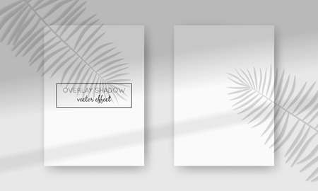 Vector two A4 cards mockup with shadow overlays on top. Organic and window frame shadows for natural light effects. Photo-realistic illustration with palm leaves