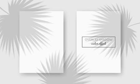 Vector two A4 cards mockup with shadow overlays on top. Organic shadows for natural light effects. Photo-realistic illustration with palm leaves