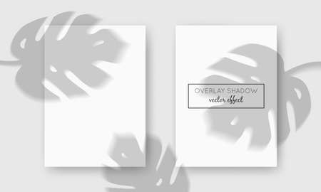 Vector two A4 cards mockup with shadow overlays on top. Organic shadows for natural light effects. Trendy photo-realistic illustration with monstera leaves Ilustracja