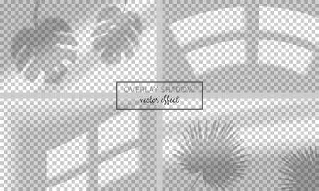 Vector set with shadow overlays  on transparent background. Organic and window frame shadows for natural light effects. Photo-realistic illustration with palm and monstera leaves Ilustracja