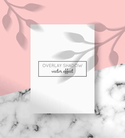 Vector A4 card mockup with shadow overlays on top and stone marble background. Organic and window shadows for natural light effects. Trendy photo-realistic illustration with tree branches