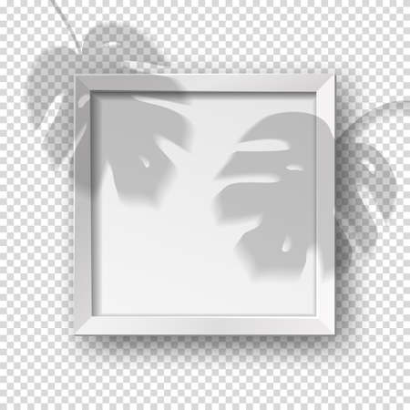 Vector realistic square empty picture frame with monstera shadow overlay effect. Mockup template with white frame boarder isolated on transparent background.