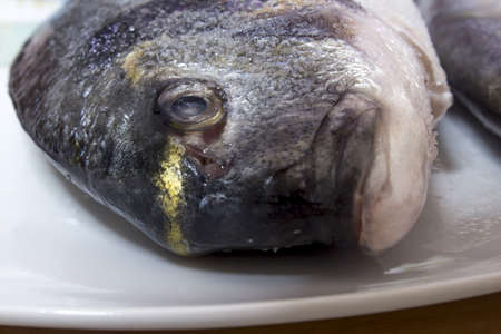 sparus: Fish in a plate close-up