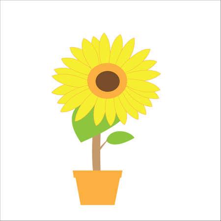 sun flower: sun flower stock vector Illustration