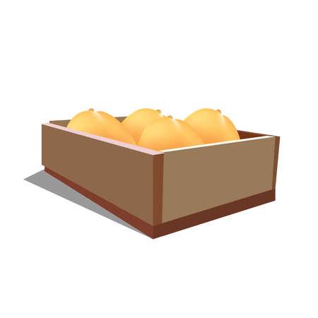 mangoes: Fresh Mangoes in box Illustration