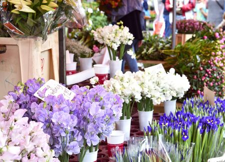 flower market: Flower market. Market stall with various fresh flowers and selective focus.