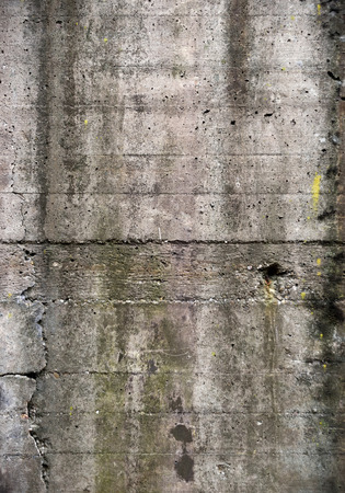feature wall: High resolution concrete wall