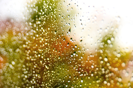 selective focus: Selective focus of raindrops on a window and autumn trees outside