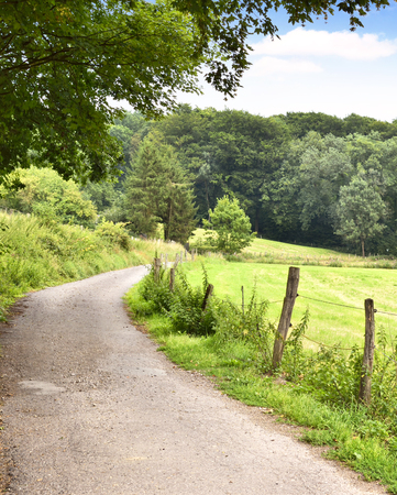 Idyllic country road in the sun, with copy space and forest. Single lane road through fields and pastures, nature background.