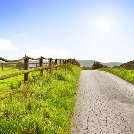 single lane road: Idyllic country road in the sun, with copy space and forest. Single lane road through fields and pastures, nature background. Wooden fence along the street and cows lying on the pasture.