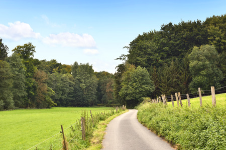 single lane road: Idyllic country road with copy space and forest. Single lane road through fields and pastures, nature background.