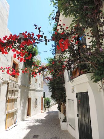 Idyllic alley with flowers at Ibiza town. Dalt Vila. Фото со стока
