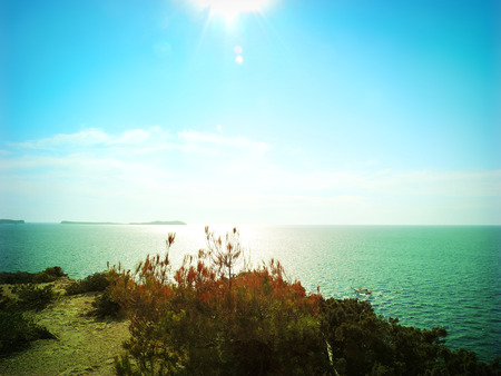 dyllic: Sunny coastline with view over the sea.