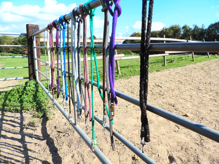 Fence of a horse paddock with multicolored lashes. Stock Photo