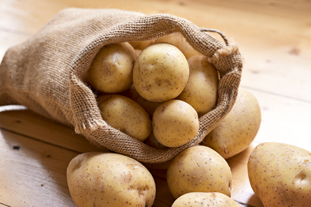 Fresh raw potatoes in a burlap sack. Earthy potato scene with bagcloth, arrangement on a wooden background, cooking ingredient.