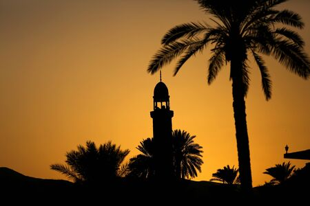 A silhouette of a palm tree with a mosque in the city of Jericho in Palestine Imagens