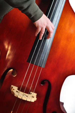 Musician playing an upright bass with fingers photo