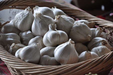 Bulbs of garlic in a wicker basket at a farmers market photo