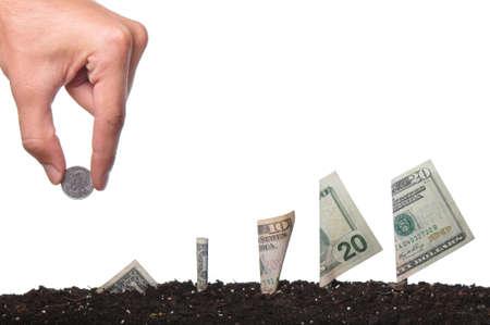 nestegg: Investment or saving concept on white background