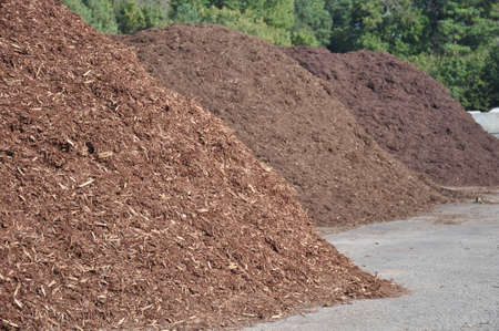 three different types of mulch offered for sale at a garden supply center Foto de archivo