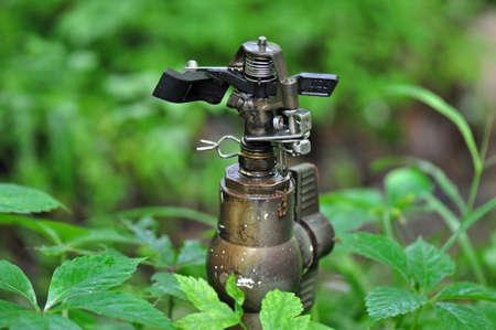 Garden Sprinkler head nestled into garden foliage in Chapel Hill, North Carolina