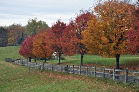 Fence and farm fields in western North Carolina photo