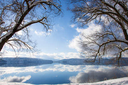 symmetrical trees on a beautiful lake day photo