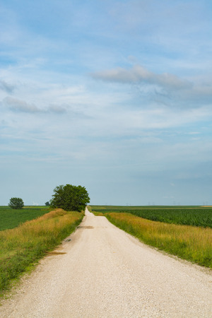 Rural dirt road in Central Illinois countryside. 版權商用圖片