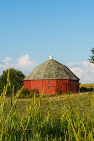 Red round barn through the tall grass on a Summer afternoon.  LaSalle County, Illinois, USA