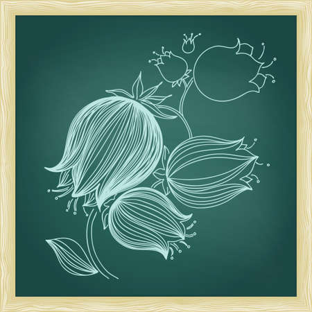 bluebell: Drawing of abstract bluebell flower. Green chalkboard with frame