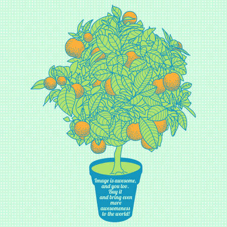 tangerine: Drawing of a small tangerine tree in a pot in contour style Illustration