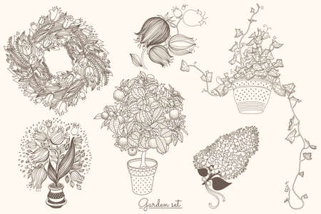 campanula: Garden set with 6 plants in flowerpot: bluebell, citrus tangerine, campanula, tulip and ivy. Design template in vintage style like gravure. 6 in 1. Illustration