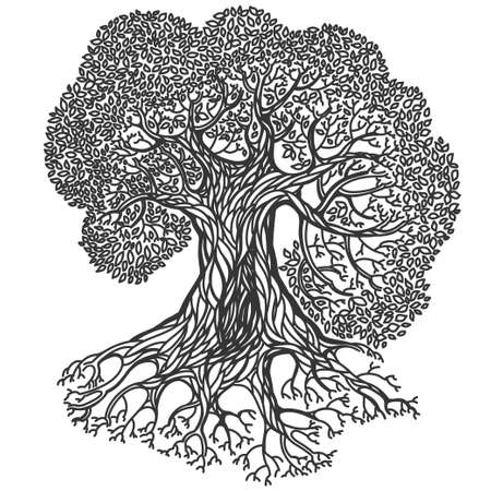 allegory painting: Oak tree illustration. Stylized vector isolated  silhouette on white background. Nature, parks, forest and ecology theme.