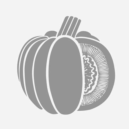 pumpkin patch: Pumpkin Isolated Drawing. Vector illustration from trace contour method. Harvest Thanksgiving Day.