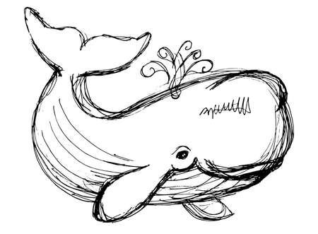 cachalot: The whale drawing. Hand drawn illustration with whale. Animal in the sea and ocean.
