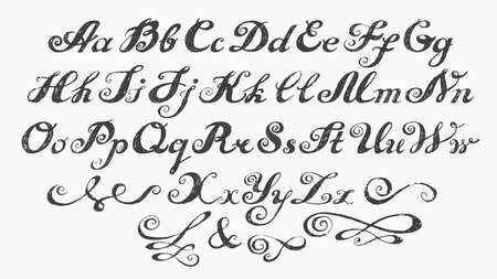 calligraphy alphabet: Calligraphy alphabet typeset lettering Illustration