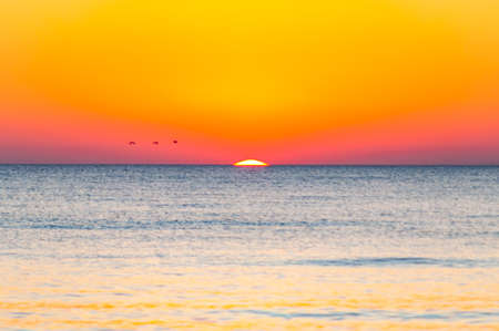 The last seconds of the amazing sundown. Three birds flying above the horizon, a bit of the sun star sphere is showing up above the sea. Vibrant sunset on Cala Violina beach, Scarlino, Grosetto, Italy Stock Photo - 133739296