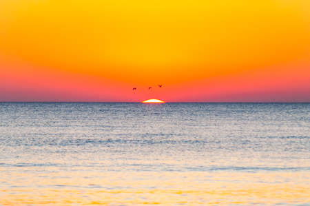 The last seconds of the amazing sundown. Three birds flying above the horizon, a bit of the sun star sphere is showing up above the sea. Vibrant sunset on Cala Violina beach, Scarlino, Grosetto, Italy Stock Photo