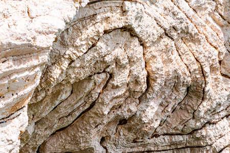 Closeup view on limestone rock texture fragment on Gargano coastline in Puglia, Italy. Rock formations example Reklamní fotografie