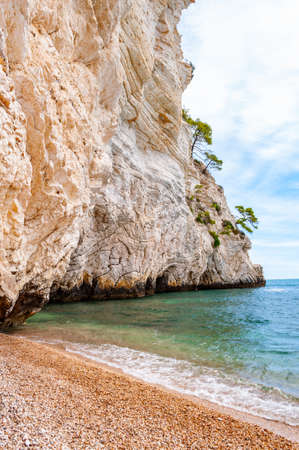 Beautiful pebble beach surrounded by high massive white limestone rocky cliffs eroded by Adriatic sea waves and wind. Green Aleppo pines growing on the rocks. Emerald water washing a coast of Gargano