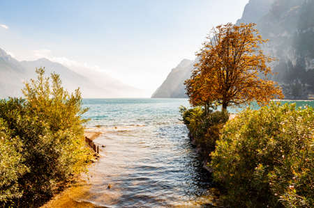 Trees and plants growing on the shore of beautiful Garda lake in Lombardy, Italy surrounded by high dolomite mountains. Sun rays penetrating from above the rocks and warming misty fog above the water 版權商用圖片