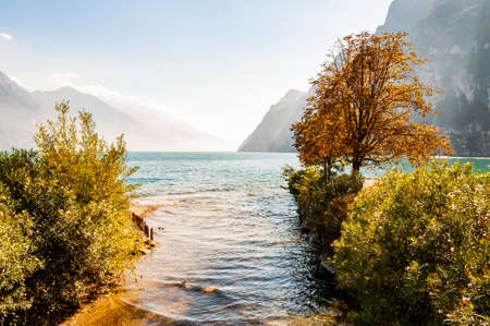Trees and plants growing on the shore of beautiful Garda lake in Lombardy, Italy surrounded by high dolomite mountains. Sun rays penetrating from above the rocks and warming misty fog above the water 版權商用圖片 - 136628956